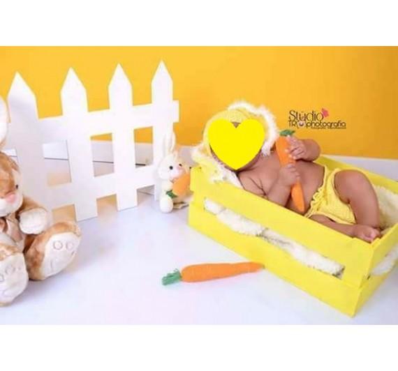 Cerca Newborn Branca